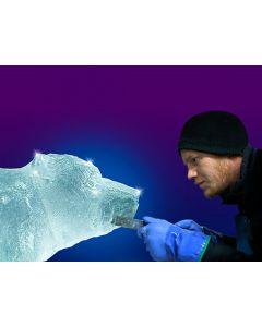 Ice Sculpting Workshops