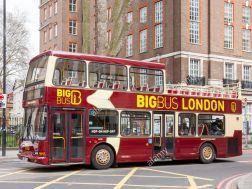 Big Bus Copy