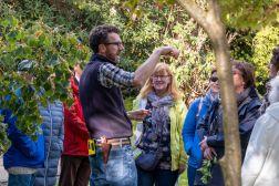 Tea & Tour with Head Gardener - Wednesday 22nd September